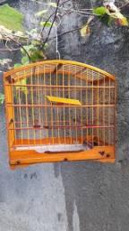Vende gaiola e caixa para transporte.