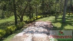 Chácara para Venda, Santa Isabel / SP, bairro Ouro Fino, área total 10.300,00 m²