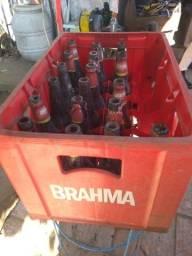 Caixas de cerveja com casco 24 unidades