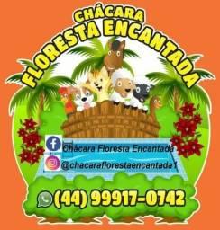 Chácara Floresta Encantada