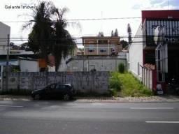 Terreno para alugar em Cambuí, Campinas cod:TE049117