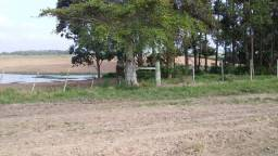 Fazenda 390 hectares TAPES RS