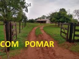 Linda Chácara Rochedo com 10,7 Hectares com Pomar