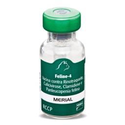 Vacina Feline-4 Importada