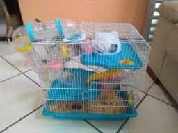 Gaiola para hamster com hamster anão russo