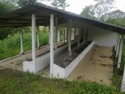 Sítio com 2,5 hectares, em Monjope(Igarassu), a 3 km da br101