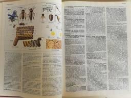 Grande Enciclopédia
