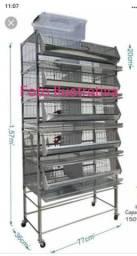 Bateria de gaiolas para codornas