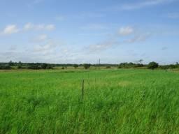 Vendo fazenda em Nova Esperança do Piriá