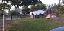 Excelente Fazenda com 80 hectares em Judiá