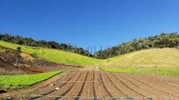 Fazenda com 131,5 ha, sendo 83,82 ha últeis/cultiváveis, 9 casas de trabalhadores, 1 se...