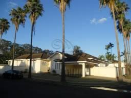 Casa à venda com 3 dormitórios em Cidade alta, Jaboticabal cod:V5142