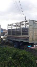 Transportes de animais *