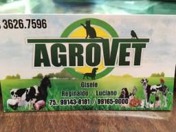 Loja de produtos veterinários
