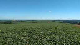 Fazenda para arrendamento Xingu cod ed 100