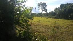 Chácara de 15 hectares. Jaraguari