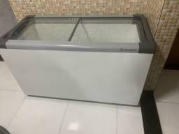 2 Freezer metalfrio 220v