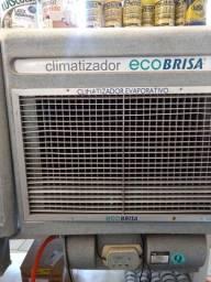 Climatizador Ecobrisa