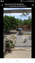 Vendo ou alugo pro final de ano chácara em Salinópolis