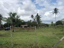 Fazenda em alhandra