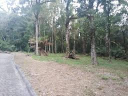 Terreno à venda, 1204 m² por R$ 299.000,00 - Caracol - Canela/RS