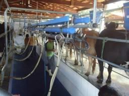 Chácara à venda em Zona rural, Barro alto cod:CHA47