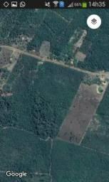 Vendo um terreno 3,5 hectares, ou vendo a metade