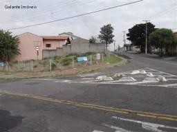 Terreno para alugar em Jardim carlos lourenço, Campinas cod:TE049719