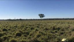 2.300 Ha -Fazenda em Bodoquena - MS - SIC