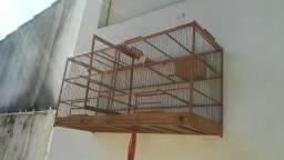 Gaiola criadeira em madeira