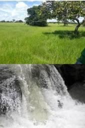 Fazenda dos sonhos rio sede plantação cultura curral braquiária corte leiteiro muita água