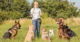 Cuidadora de cachorro 35
