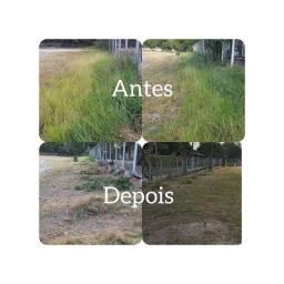 Demolições e limpeza de terrenos serviços