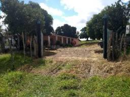 D555 Excelente Fazenda em pintoba Alagoas
