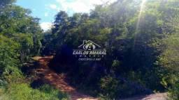 FAZENDA à venda, CENTRO - GOVERNADOR VALADARES/MG