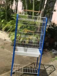 Viveiro para papagaio