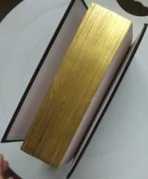 Bíblia Sagrada Católica Ilustrada Edição de Luxo em Perfeito Estado