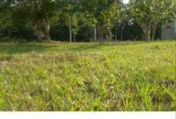 Terreno em Belterra - Pará. Ótimo para construção e ótimo de preço