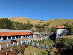 Fazenda em Lorena 155 alqueires