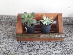 Floreira madeira e galho