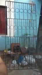 Portão  ou grade de proteção  ferro Grosso