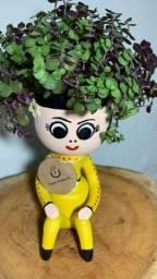 Vasos de plantas bonequinha
