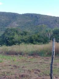 Chácara Escriturada 38 hectares Formosa GO