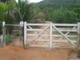 138D/Excelente fazenda de 295 ha em Ladainha/MG - ac permuta