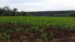 Fazenda à venda, 150000000 m² por R$ 55.809.000,00 - Zona Rural - Pilão Arcado/BA