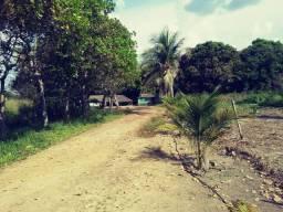 Fazenda com 190 hectares a 10 km do Canta/RR, ler descrição do anuncio