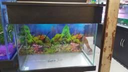 Aquario 72L - 60x30x40cm