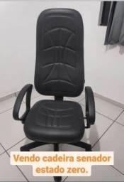 Cadeira Senador