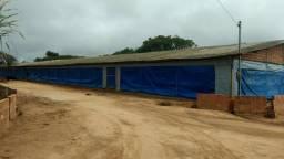 Chácara com granja e poço artesiano com evasão de 8 mil litros por hora