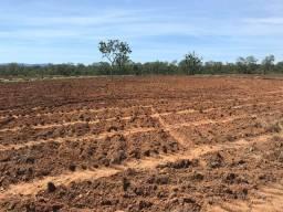 Fazenda 151 Alqueires | região Caçu | prazos 3 anos